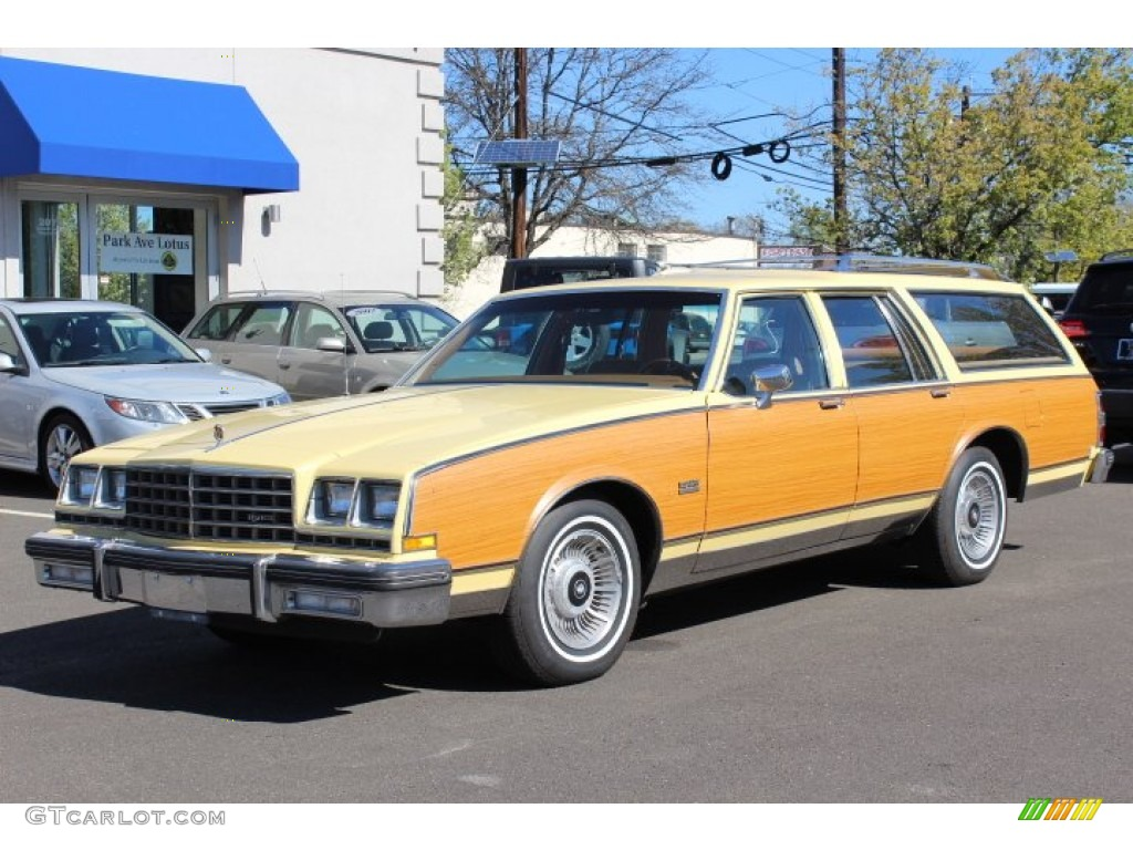 Automotive Paint Colors >> 1980 Yellow Buick LeSabre Estate Wagon #63451280 Photo #8 ...