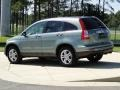 2010 Opal Sage Metallic Honda CR-V EX  photo #6