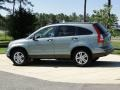 2010 Opal Sage Metallic Honda CR-V EX  photo #7