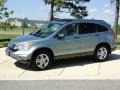 2010 Opal Sage Metallic Honda CR-V EX  photo #9