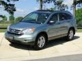 2010 Opal Sage Metallic Honda CR-V EX  photo #10