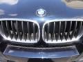 2010 BMW X6 M Standard X6 M Model Badge and Logo Photo