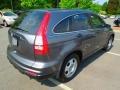 2010 Polished Metal Metallic Honda CR-V LX  photo #6