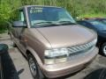 2001 Light Autumnwood Metallic Chevrolet Astro AWD Passenger Van #64663762