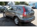 2010 Polished Metal Metallic Honda CR-V EX-L AWD  photo #10