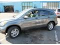 2010 Polished Metal Metallic Honda CR-V EX-L AWD  photo #12