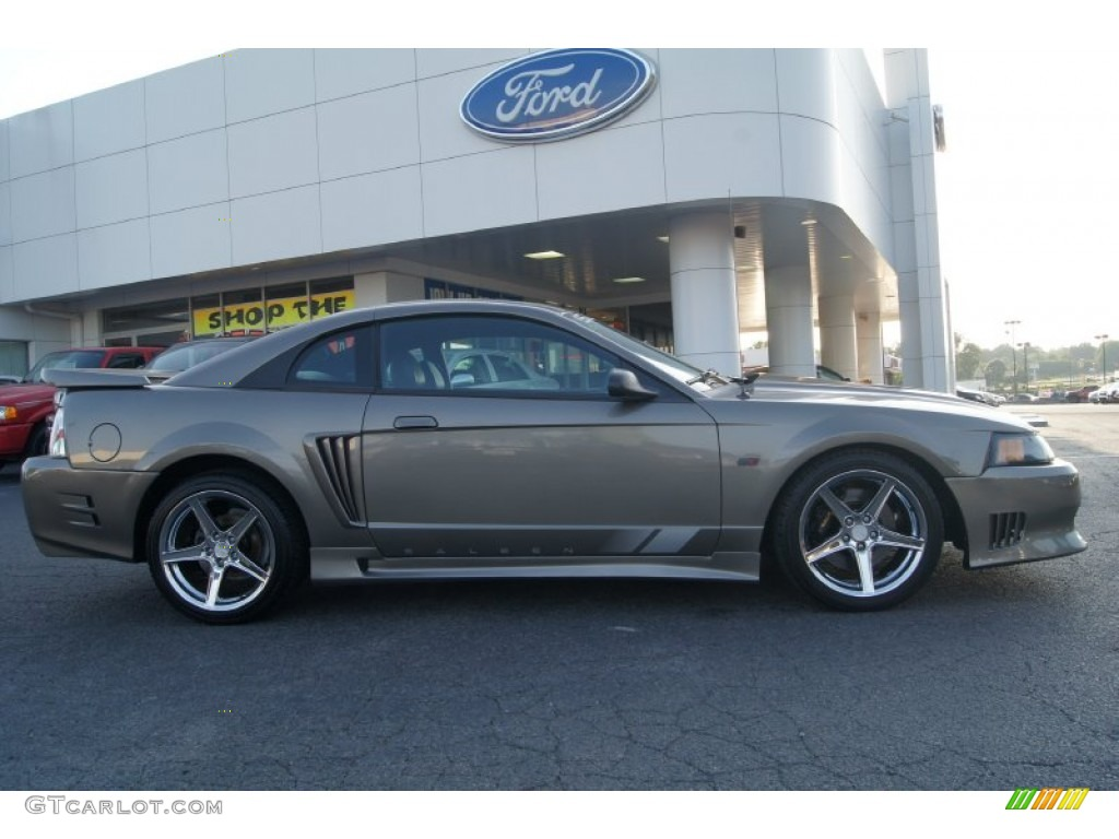 Mineral Grey Metallic 2002 Ford Mustang Saleen S281 Supercharged Coupe Exterior Photo #65918711