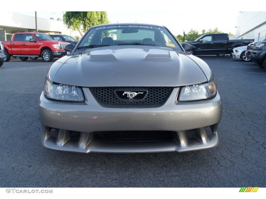 Mineral Grey Metallic 2002 Ford Mustang Saleen S281 Supercharged Coupe Exterior Photo #65918741