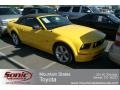 Screaming Yellow 2006 Ford Mustang Gallery