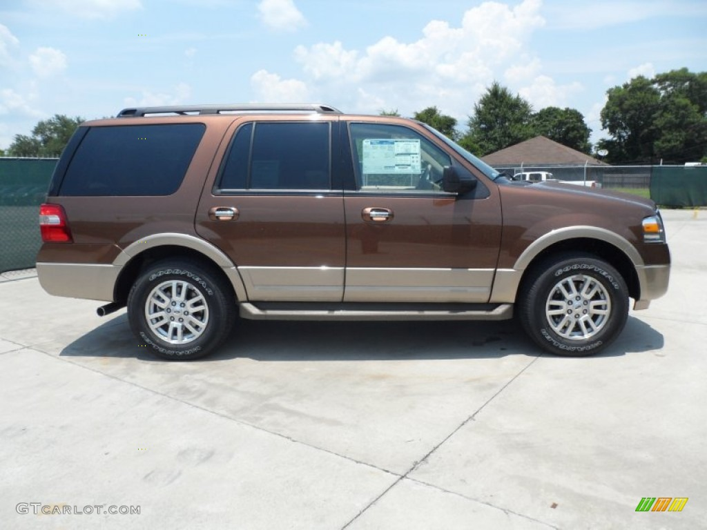 golden bronze metallic 2012 ford expedition xlt exterior photo 66252041. Black Bedroom Furniture Sets. Home Design Ideas