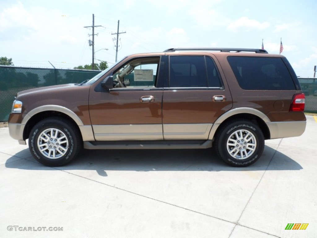 golden bronze metallic 2012 ford expedition xlt exterior photo 66252074. Black Bedroom Furniture Sets. Home Design Ideas