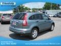 2010 Opal Sage Metallic Honda CR-V EX AWD  photo #7