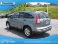 2010 Opal Sage Metallic Honda CR-V EX AWD  photo #9