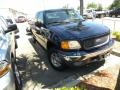 True Blue Metallic 2004 Ford F150 Gallery