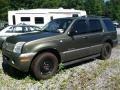Estate Green Metallic 2002 Mercury Mountaineer AWD