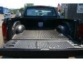 2006 Mineral Gray Metallic Dodge Ram 1500 ST Regular Cab  photo #10