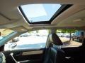 2010 Alabaster Silver Metallic Honda CR-V EX-L  photo #11