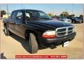 2004 Black Dodge Dakota Sport Quad Cab  photo #10