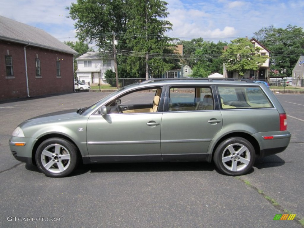 Fresco green metallic volkswagen passat