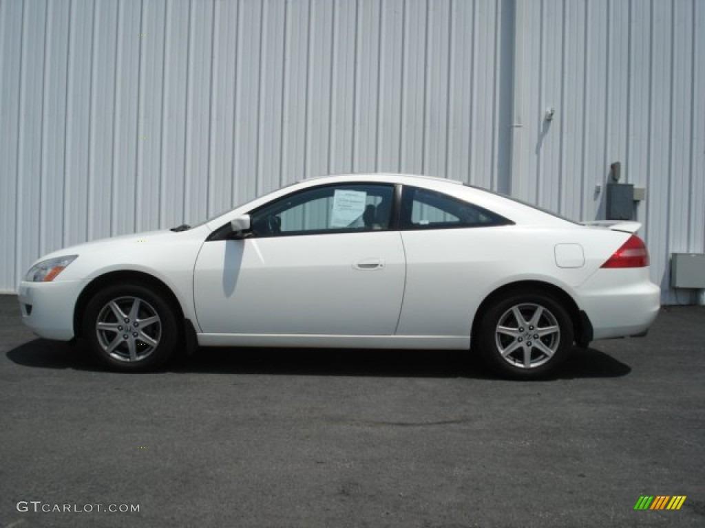 Taffeta White Honda Accord