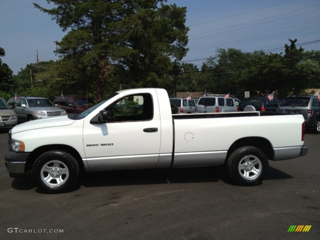 2002 Ram 1500 ST Regular Cab - Bright White / Dark Slate Gray photo #11