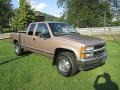 Light Autumnwood Metallic 1997 Chevrolet C/K Gallery