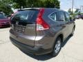 2012 Urban Titanium Metallic Honda CR-V LX 4WD  photo #4