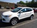White Platinum Metallic Tri-Coat 2013 Ford Escape Titanium 2.0L EcoBoost 4WD Exterior