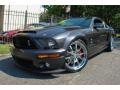 Alloy Metallic 2008 Ford Mustang Gallery