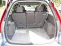 2010 Glacier Blue Metallic Honda CR-V LX  photo #5