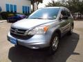 2010 Glacier Blue Metallic Honda CR-V LX  photo #7