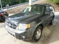 2009 Black Pearl Slate Metallic Ford Escape Limited 4WD  photo #5
