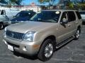 Light French Silk Metallic 2004 Mercury Mountaineer V8 Premier AWD