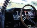Platinum - GTO Hardtop Photo No. 10