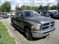 2010 Mineral Gray Metallic Dodge Ram 3500 SLT Crew Cab 4x4  photo #5