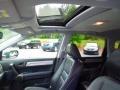 2010 Polished Metal Metallic Honda CR-V EX-L  photo #10