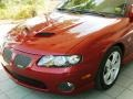 Spice Red Metallic - GTO Coupe Photo No. 30