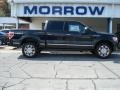 Tuxedo Black Metallic 2012 Ford F150 Platinum SuperCrew 4x4