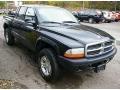 2004 Black Dodge Dakota Sport Quad Cab 4x4  photo #9