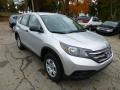 2013 Alabaster Silver Metallic Honda CR-V LX AWD  photo #6