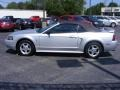 2001 Silver Metallic Ford Mustang V6 Convertible  photo #10