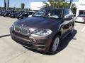 Sparkling Bronze Metallic 2013 BMW X5 Gallery