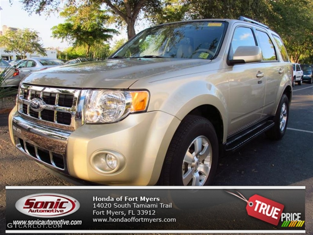 2010 Gold Leaf Metallic Ford Escape Limited 72991423