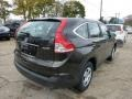2013 Kona Coffee Metallic Honda CR-V LX AWD  photo #4