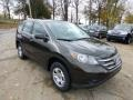 2013 Kona Coffee Metallic Honda CR-V LX AWD  photo #6