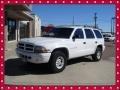 Bright White 1999 Dodge Durango Gallery