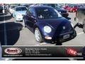 Marlin Blue Pearl 2002 Volkswagen New Beetle Gallery