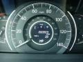 2013 Twilight Blue Metallic Honda CR-V LX AWD  photo #19