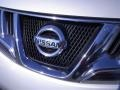 2010 Brilliant Silver Metallic Nissan Murano SL  photo #6