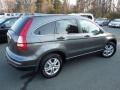 2010 Polished Metal Metallic Honda CR-V EX  photo #4